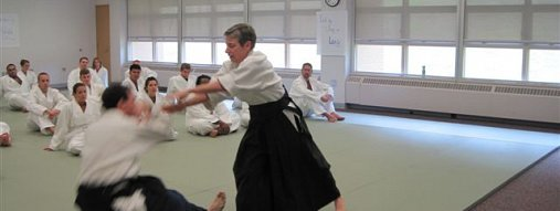 What Aikido Can Teach Us About Learning Plateaus